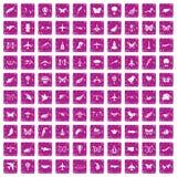 100 Fliegenikonen stellten Schmutzrosa ein Stockfotografie