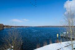 Fliegenvögel über Wintersee oder -fluß mit schneebedeckten Ufern Stockbild