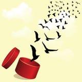 Fliegenvögel außerhalb der Kastenvektorillustration Stockbilder