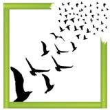 Fliegenvögel außerhalb der Kastenvektorillustration Stockfoto