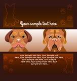 Fliegerbroschürendesigne von zwei Hunden Lizenzfreie Stockfotografie