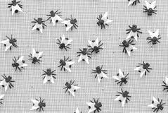 Flies. On a window screen Stock Image