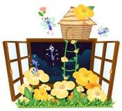 Flies, bird house and window Royalty Free Stock Photo