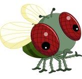 Flies cartoon. Illustration of cute Flies cartoon Stock Images