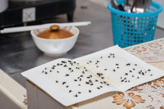 Flies caught on white sticky fly  trap Stock Photo