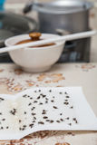 Flies caught on white sticky  paper trap Royalty Free Stock Photos