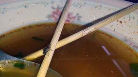 Flies eat food scraps in noodle stock video