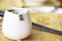 The flies that are feeding on the white Cup is placed on a wooden tray stock photography