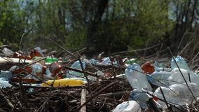 Flies fly over a pile of rubbish. Plastic bottles and other trash on the ground. stock video footage