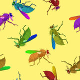 Flies pattern Royalty Free Stock Photography
