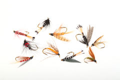 Flies used by fly  fishermen Royalty Free Stock Images
