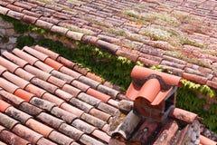 Fliese und Anlage deckten Dach ab Stockfotos