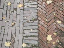 Fliesen des dekorativen Steins Alte Beschaffenheit mit Herbstlaub Lizenzfreies Stockfoto