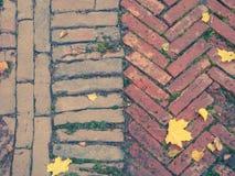 Fliesen des dekorativen Steins Alte Beschaffenheit mit Herbstlaub Lizenzfreie Stockfotos