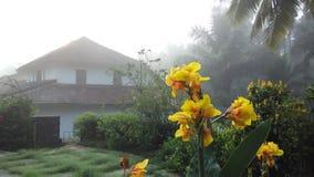 Fliesenhaus im Nebel Stockfotografie