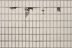 Fliesenwand, wo einiges gebrochenes mit Ziegeln deckt Stockfotografie