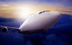 Flight Royalty Free Stock Photo