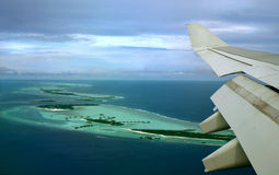 Flight above islands. Flying by above islands and looking eyes of birds Royalty Free Stock Photo