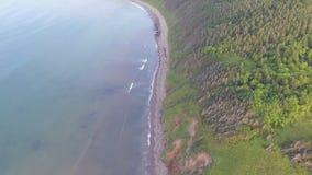 Flight along the coast stock footage