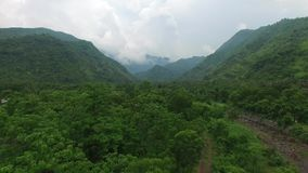 Flight along mountains covered with rainforest stock video