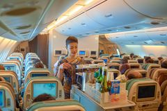 Flight attendant serve food and drinks. SINGAPORE - NOVEMBER 03, 2015: flight attendant serve food and drinks to passengers on board of Singapore Airlines Airbus Royalty Free Stock Photo