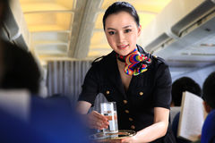 Flight attendant serving people on airplane Stock Photos