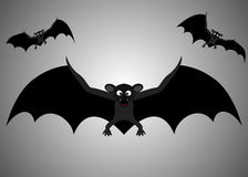 Flight of a bat Royalty Free Stock Images