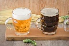 Flight beer. Berr for tasting royalty free stock photos