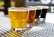 Flight of Beers. A flight of four refreshing beers, ready for tasting Royalty Free Stock Images