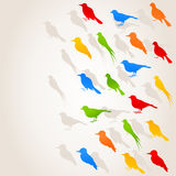 Flight of birds4 Stock Image