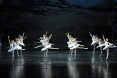 Flight Brigade-The Swan Lakeside-ballet Swan Lake Royalty Free Stock Photo