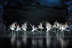 Flight Brigade-The Swan Lakeside-ballet Swan Lake Stock Images