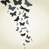 Flight of butterflies Stock Image