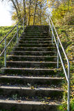 Flight of concrete steps leading up an embankment Stock Images