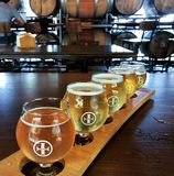 Flight of Craft Beer Inside a Tasting Room royalty free stock image