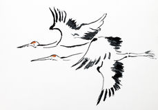 Flight of cranes Royalty Free Stock Images
