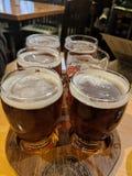 Flight of dark beers royalty free stock photos