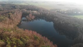 Flight with a drone over a lake in the middle of the forest on a sunny day stock video footage