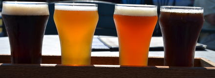 A flight of home brewed beer in VT Stock Photos