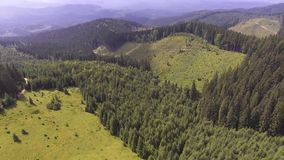 Flight in the mountains over the summer Carpathian forest. stock video footage