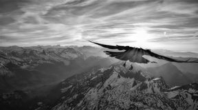 Flight in the mountains royalty free stock photo