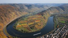 Flight over Bremm vineyards, Germany. Flight over autumn Bremm vineyards and Mosel river meander, Germany stock video