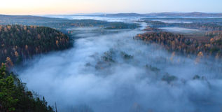 Flight over autumn forest Stock Photos