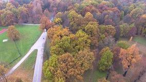 Flight over autumn park stock video footage