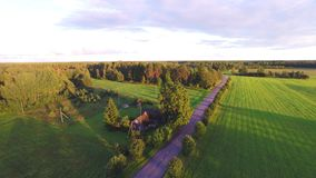 Flight over beautiful field and trees on background. Aerial rural landscape. Stunning aerial shot over lush green fields and meadows in the Estonian countryside stock video footage