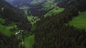 Flight over forest in mountains stock footage