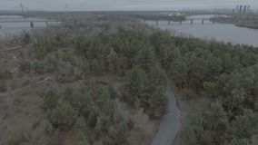 A flight over a forest park, pine trees, a flight over treetops and a road, the Dnieper River, in the distance one can. See the bridge hd stock footage