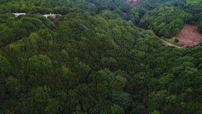 Flight over forest in mountains stock video footage