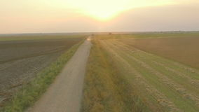 Flight over local road with truck on it between bean field and garden. At sunset stock video
