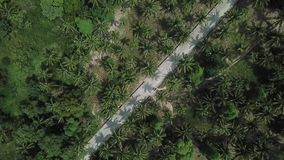 Flight over the road in the jungle on the island of Koh Phangan stock footage